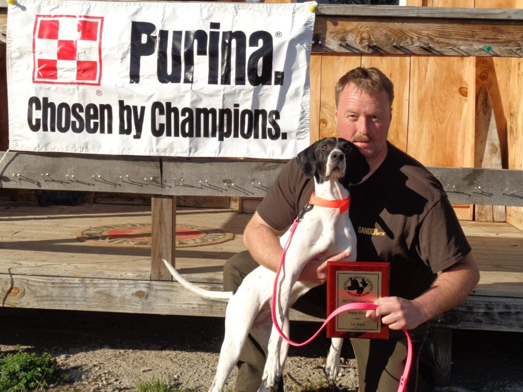 Puppy Group: 1st place - Alan Rudy, English Pointer - Dakota 2nd place - Not pictured: James Hogerdobler, Llewellin Setter - Ricky 3rd place - Not Pictured: James Hogerdobler, Llewellin Setter - Ricky