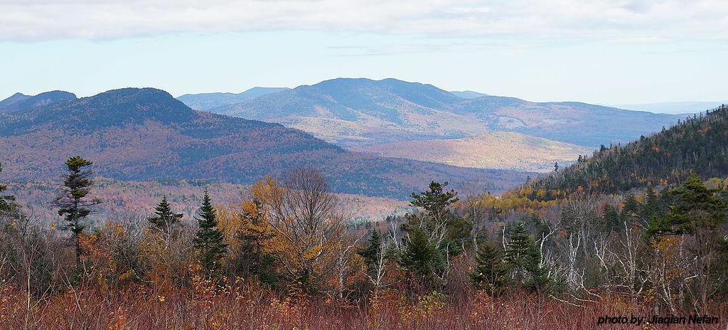 White Mtn. National Forest