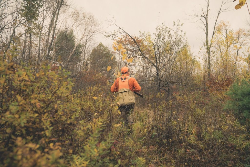 grouse and woodcock hunting