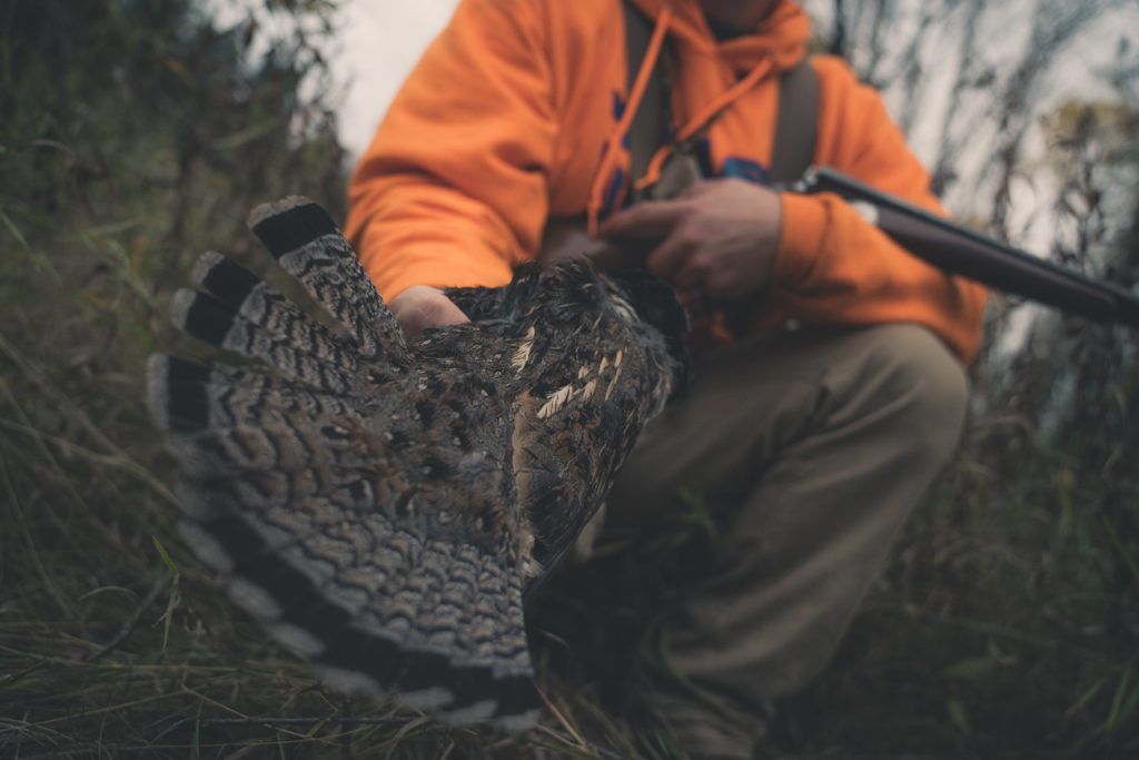 grouse-and-woodcock-hunt