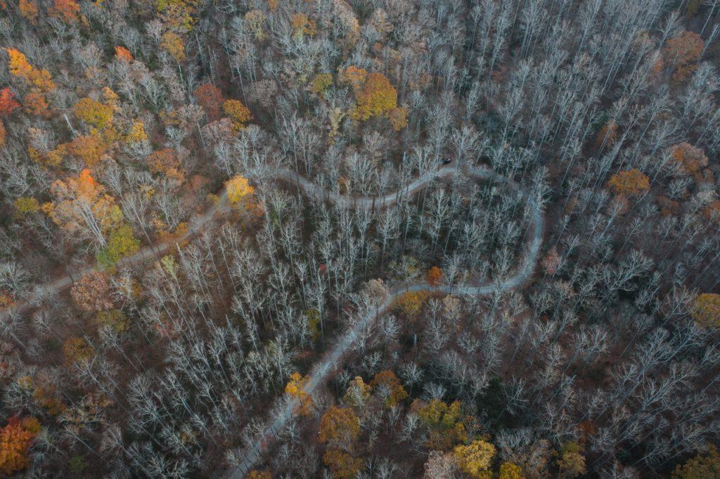 Nantahala-Pisgah forest plan