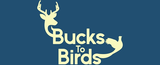 bucks-to-birds
