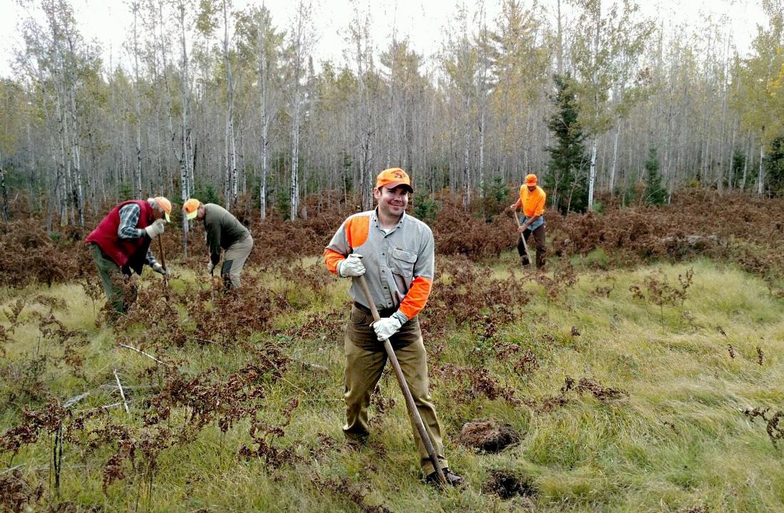 RGS & AWS members work on habitat project in Michigan